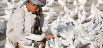 International Day of Nonviolence in Afghanistan